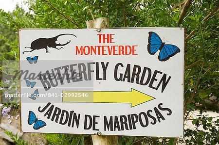 Butterfly Park, Monteverde, Costa Rica, l'Amérique centrale