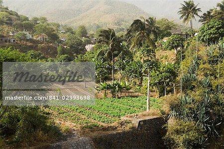 Agriculture, Santiago, Cape Verde Islands, Africa