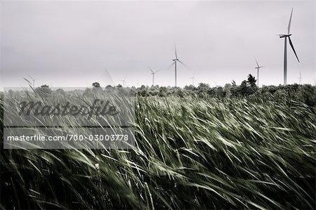 Wind Farm, Wolfe Island Wind Project, Ontario, Canada