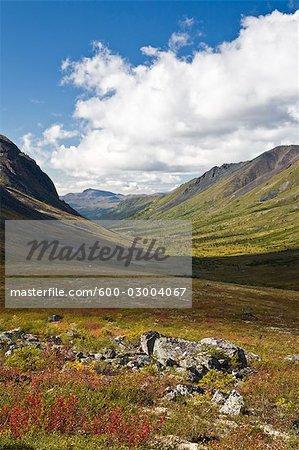 Tombstone-Flusstal, Tombstone Territorial Park, Yukon, Kanada