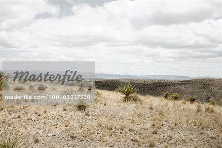 West Hills Rancheria, Presidio County, Texas, Texas, Etats-Unis
