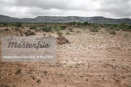 Landscape, Texas, USA