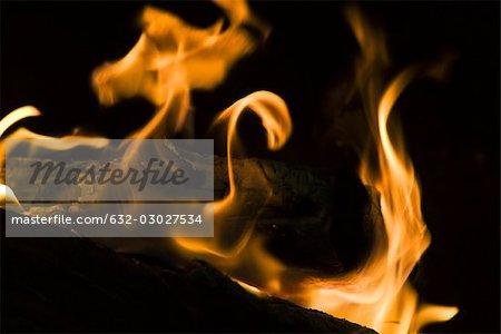 Fire, close-up