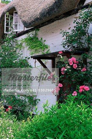 Cottage et fleurs, Wherwell, Hampshire, Angleterre, Royaume-Uni, Europe