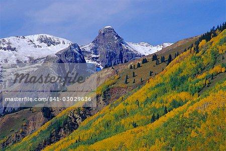 Aspen pines and snowy peaks,San Juan Skyway, Colorado, United States of America