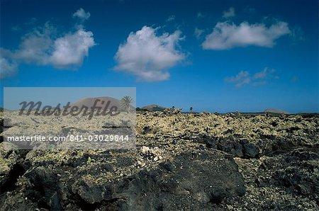 Volcanic landscape, Lanzarote, Canary Islands, Spain, Europe