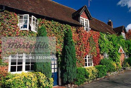 Gîtes ruraux recouvert de vigne vierge, Hursley, Hampshire, Angleterre, Royaume-Uni, Europe