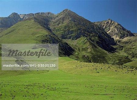 Paysage près de Arreau, Midi Pyrénées, France, Europe