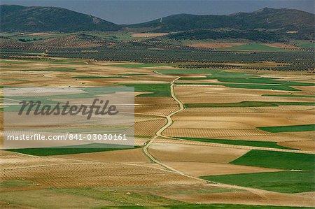 View from Windmill Hill, Consuegra, Toledo, Castile La Mancha, Spain, Europe