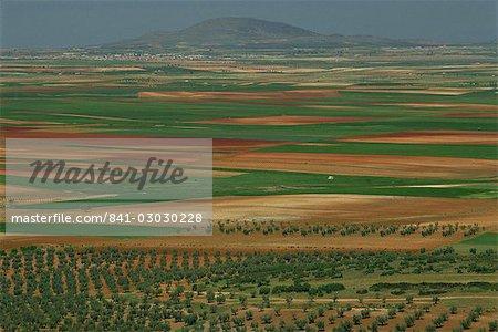 Vue aérienne du paysage des champs autour de la ville de Consuegra en Castille la Mancha (Castilla la Mancha), Espagne, Europe