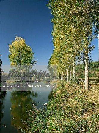 Rivière Sarthe, près du Mans, Sarthe, ouest de la Loire, Pays de la Loire, France, Europe