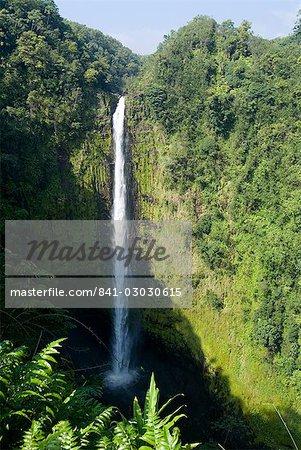 Akaka Falls, l'île d'Hawaii (Big Island), Hawaii, États-Unis d'Amérique, Amérique du Nord