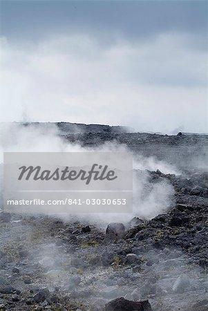 Espace thermal Kilauea, Hawaii Volcanoes National Park, patrimoine mondial de l'UNESCO, l'île d'Hawaii (Big Island), Hawaii, États-Unis d'Amérique, Amérique du Nord