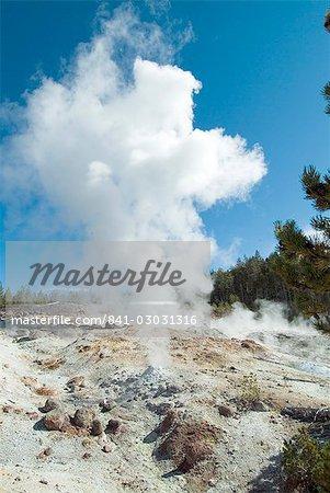 Norris Geysers, Parc National de Yellowstone, l'UNESCO World Heritage Site, Wyoming, États-Unis d'Amérique, Amérique du Nord