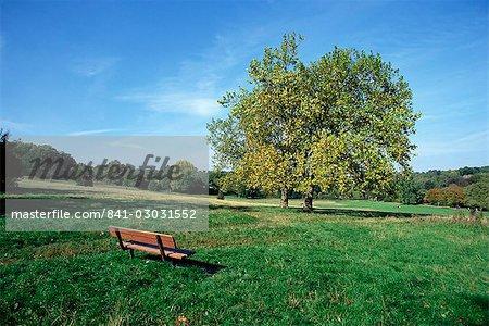 Hampstead Heath, London, England, Vereinigtes Königreich, Europa