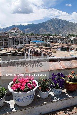 View over Lhasa looking towards Potala Palace, Lhasa, Tibet, China, Asia