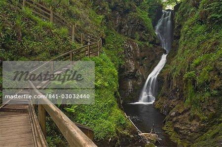 Visiteur passerelle et étapes, Ess-na-Larach cascade, Glenariff Country Park près de Waterfoot, comté d'Antrim, Ulster, Irlande du Nord, Royaume-Uni, Europe