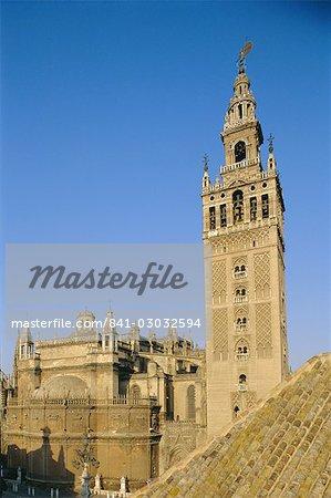 Giralda tower et Cathédrale de Séville, Andalousie (Andalousie), Espagne, Europe