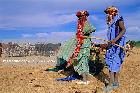 Peul herders with their cattle, River Bani, Sofara, Mali, Africa
