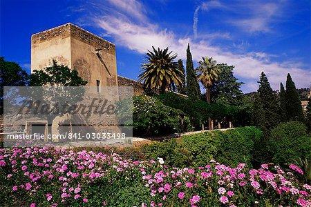 Torre de La sultane et printemps fleurs, Alcazaba, Alhambra, patrimoine mondial de l'UNESCO, Grenade, Andalousie, Espagne, Europe