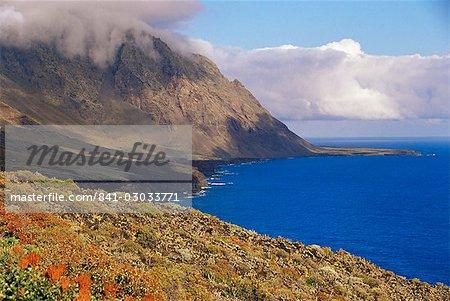 Fleurs et montagnes sur la côte sud, El Hierro, Iles Canaries, Espagne, Atlantique, Europe