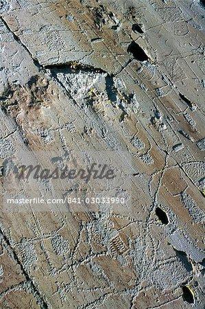Gravures rupestres, vallée de Fontanalba, Pays des Merveilles, Parc National du Mercantour, Alpes Maritimes, Provence, France, Europe