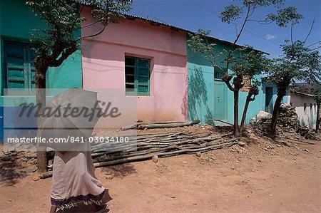Street scene,village of Abi-Adi,Tigre region,Ethiopia,Africa
