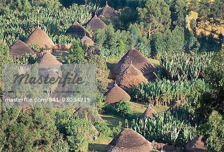 Village in the land of the Gourague,Hosana region,Shoa province,Ethiopia,Africa