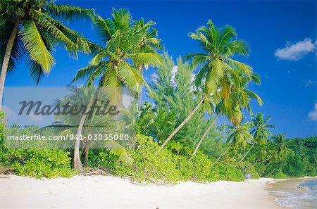 Beach,Mahe,Seychelles