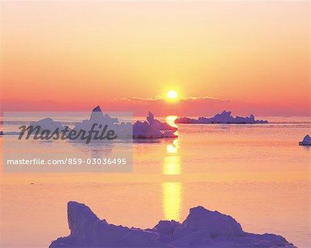 Icebergs dans l'océan