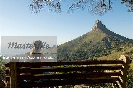 Tourisme à Lions Head, essai de Pipe, Table Mountain National Park, Cape Town, Western Cape Province, Afrique du Sud
