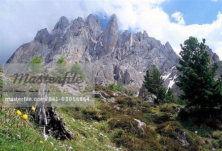 Gamme Sassolungo, 3181m, Val Gardena, Dolomites, Haut-Adige, Italie, Europe