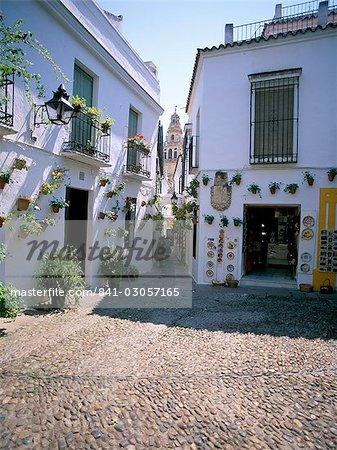 Cordoba, Andalucia (Andalusia), Spain, Europe