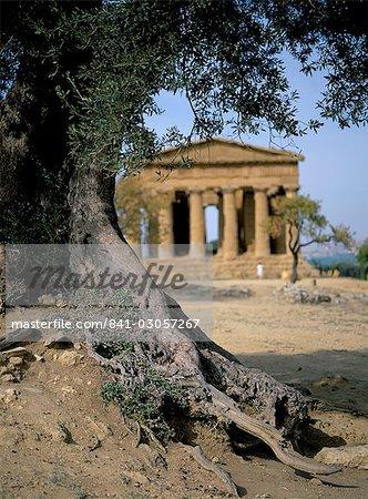 The Concordia temple, Agrigento, Sicily, Italy, Europe