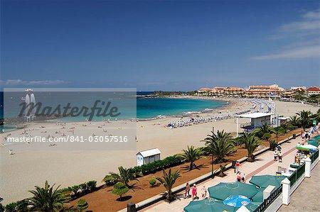 Playa de las Americas, Tenerife, Canaries Iles Espagne, Atlantique, Europe