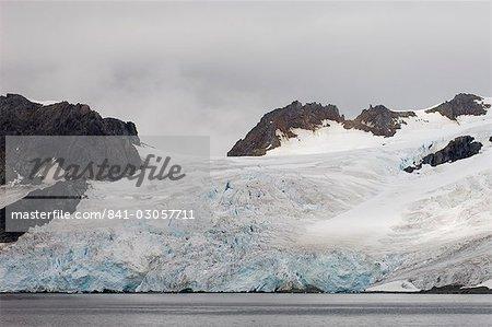 Île Livingston, les îles Shetland du Sud, l'Antarctique, les régions polaires