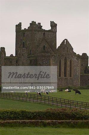 Abbaye de Dunbrody, Dumbrody, comté de Wexford, Leinster, République d'Irlande (Eire), Europe