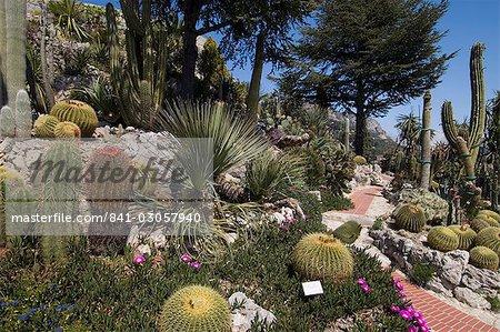 Botanischer Garten (Jardin Exotique), Eze Village, Alpes Maritimes ...