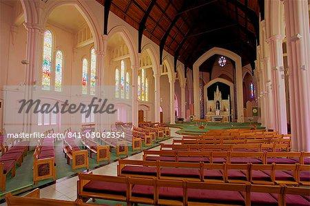 St. Patrick's Cathedral, Palmerston North, Manawatu, North Island, New Zealand, Pacific