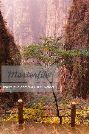 Couleurs d'automne, Xihai (ouest de la mer) vallée, Mont Huangshan (Yellow Mountain), patrimoine mondial de l'UNESCO, la Province d'Anhui, Chine, Asie