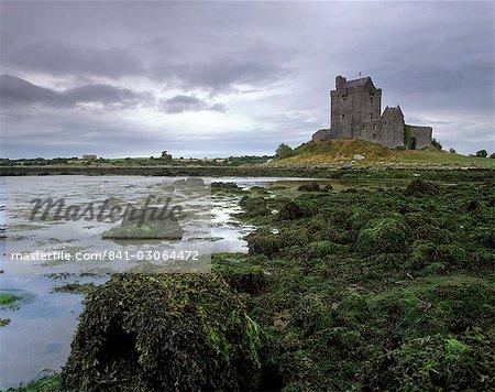 Dunguaire Castle datant du XVIe siècle et la côte, près de Kinvarra, Connacht, comté de Galway, Irlande, l'Europe