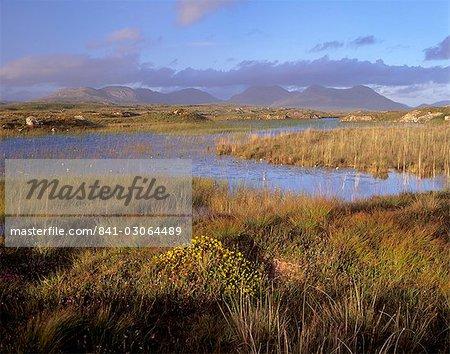 Ballynahinch Lake and the Twelve Pins, near Clifden, Connemara, County Galway, Connacht, Republic of Ireland, Europe