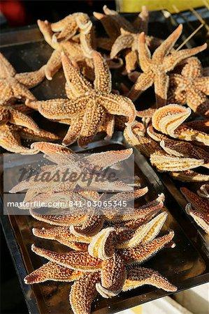 Étrange nourriture chinoise vendue dans Wangfujing Snak Road, Wangfujing Dajie shopping district, Beijing, Chine, Asie