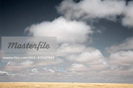 Horizon et le ciel, Marfa, Texas, USA