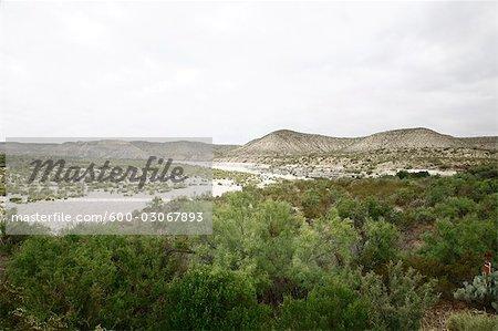 Landscape, Dryden, Texas, USA