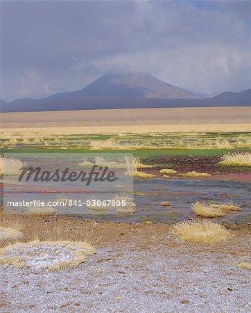Rivière Putana, Parc National de Futuro, San Pedro de Atacama, Chili
