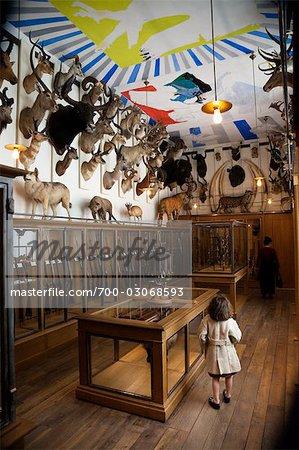 Musée De La Chasse et De La Nature, Paris, Frankreich