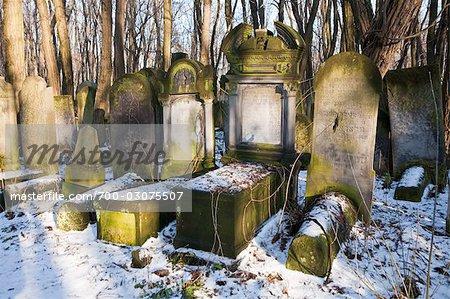 Okopowa Street Jewish Cemetery, Warsaw, Poland