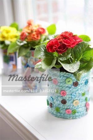 Fleurs dans les Vases faits maison