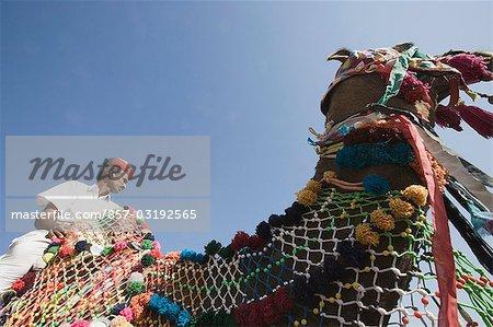 Faible angle vue d'un homme monté sur un chameau, Jodhpur, Rajasthan, Inde